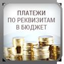 Платежи по свободным реквизитам (в бюджет)